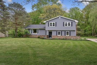 Brecksville Single Family Home For Sale: 9249 Pine View Oval