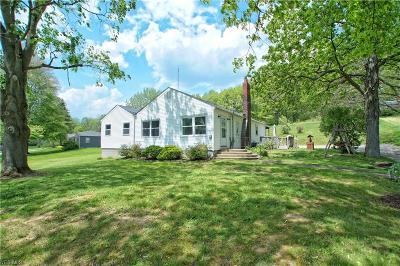 Copley Single Family Home For Sale: 2969 Kendall Rd