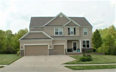 Copley Single Family Home For Sale: 4323 Bentley Dr
