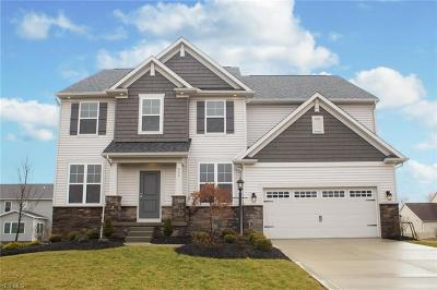 Lorain County Single Family Home For Sale: S/L 5 McIntosh Place