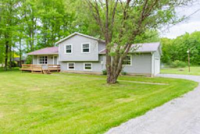 Single Family Home For Sale: 4260 Jones Rd