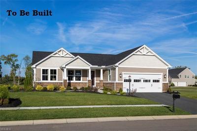 Aurora Single Family Home For Sale: 885 Sunrise Cir