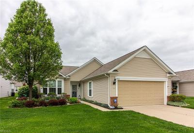 Lorain County Single Family Home For Sale: 9352 Asbury Ln