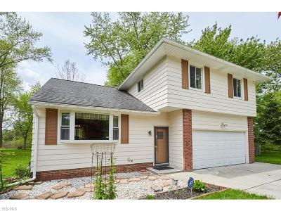 Beachwood, Chagrin Falls, Lyndhurst, Seven Hills, Solon, Aurora, Hudson, Kent, Reminderville, Sagamore Hills, Twinsburg Single Family Home For Sale: 37910 Aurora Rd