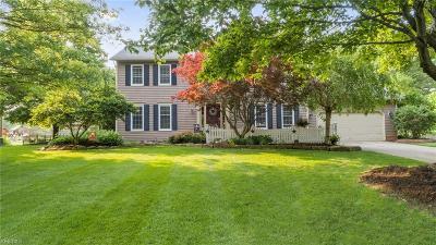 Hudson Single Family Home For Sale: 853 Virginia Drive