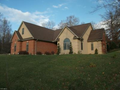 Zanesville Single Family Home For Sale: 6000 North Park Drive