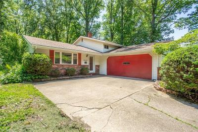 Lorain County Single Family Home For Sale: 36475 Aurensen Road