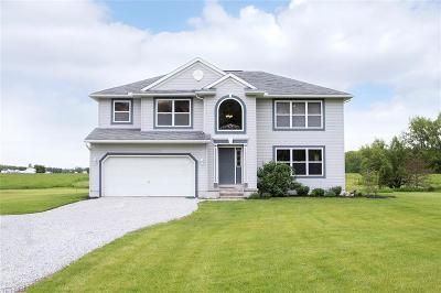 Medina County Single Family Home For Sale: 11875 Spencer Mills Road