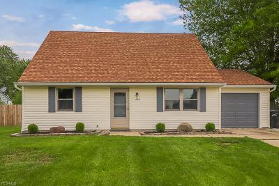 Elyria Single Family Home For Sale: 446 Carol Lane