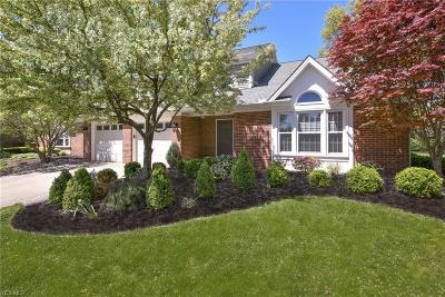 Rocky River Single Family Home For Sale: 4 South Hampton Ct