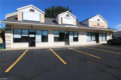 Commercial For Sale: 5517 State Road