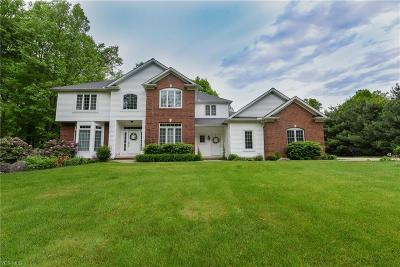 Chagrin Falls Single Family Home For Sale: 10760 Robert Lane
