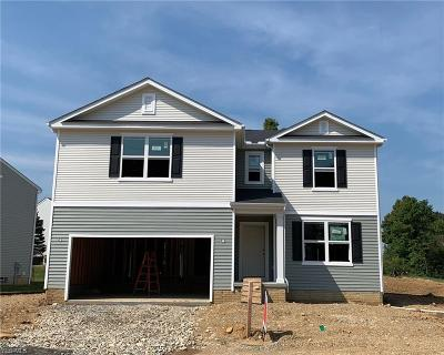 Licking County Single Family Home For Sale: Lot 287 Kelci Jayne Drive