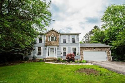 Hudson Single Family Home For Sale: 7525 Brandywine Road
