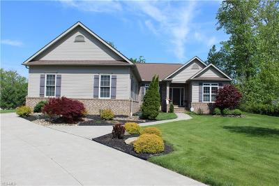 Painesville Single Family Home For Sale: 8330 Cambden Crossing Way