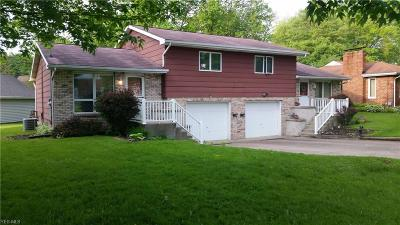 Newton Falls Multi Family Home For Sale: 270 Maple Street