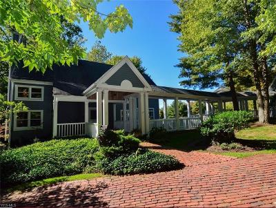 Chagrin Falls Single Family Home For Sale: 16908 Catsden Rd