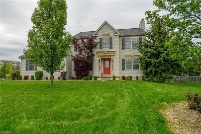Medina County Single Family Home For Sale: 5843 Enfield Circle