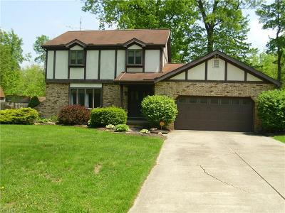 Single Family Home For Sale: 350 S Colonial Dr