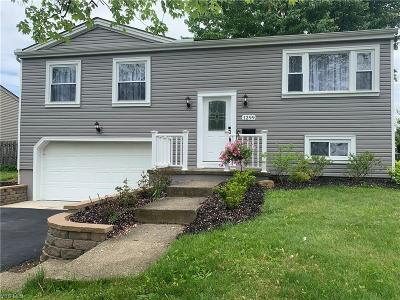 Youngstown Single Family Home For Sale: 1299 Bexley Drive
