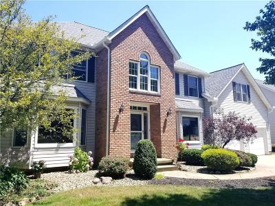 Copley Single Family Home Coming Soon: 4275 Bramble Dr
