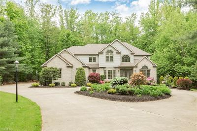 Chagrin Falls Single Family Home For Sale: 9720 Weathertop Lane