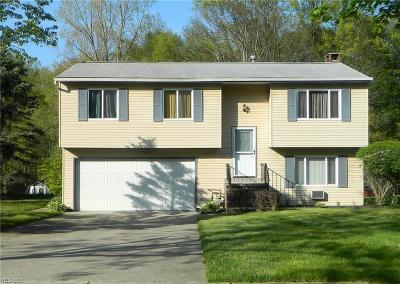 Twinsburg Single Family Home For Sale: 11245 Heritage Drive