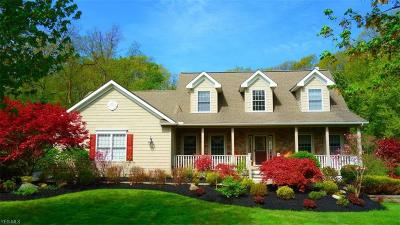Painesville Single Family Home For Sale: 11244 Exmoor Dr