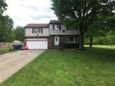 Single Family Home For Sale: 3691 Lyntz Townline Road