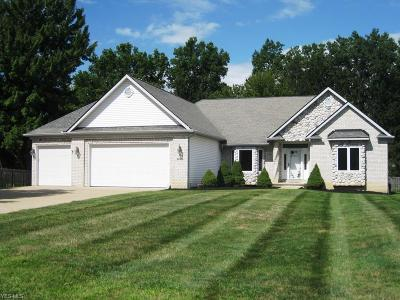 Strongsville Single Family Home For Sale: 20456 Scotch Pine Way