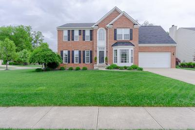 Lorain Single Family Home For Sale: 6101 Antler Crossing