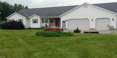 Elyria Single Family Home For Sale: 43580 Stang Road