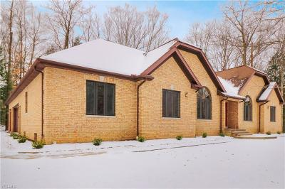 Willoughby Hills Single Family Home For Sale: 2910 Millgate Dr