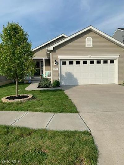 Lorain Single Family Home For Sale: 4036 Montgomery Drive