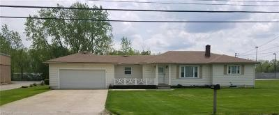 Elyria Single Family Home For Sale: 41369 Schadden Road
