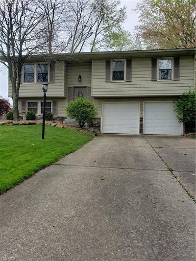 Youngstown Single Family Home Active Under Contract: 1974 Penny Lane