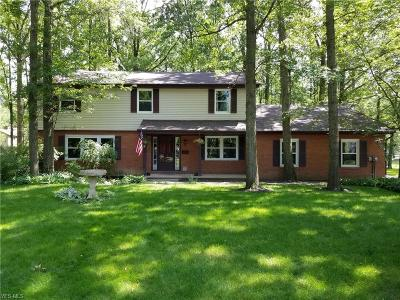 Canfield Single Family Home For Sale: 511 N Briarcliff
