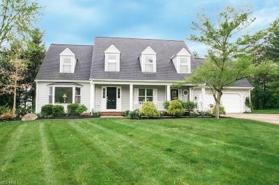Chagrin Falls Single Family Home For Sale: 40 Highland Ln
