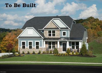 Avon Single Family Home For Sale: 2639 Covington Place
