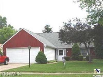 Elyria Single Family Home For Sale: 155 Hemlock Drive