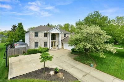 Westlake Single Family Home For Sale: 28706 Laughlin Ln