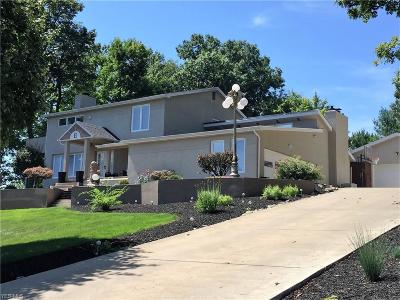 Canfield Single Family Home Active Under Contract: 6136 Southern Hills Court