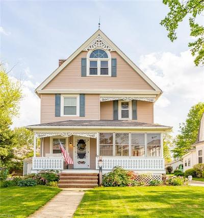 Elyria Single Family Home For Sale: 223 Eastern Heights Boulevard