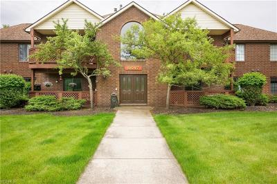 Broadview Heights Condo/Townhouse Active Under Contract: 8647 Scenicview Drive #F204