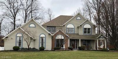 Avon, Avon Lake Single Family Home For Sale: 375 Avon Point Ave