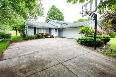 Strongsville Single Family Home For Sale: 9447 Fair Road