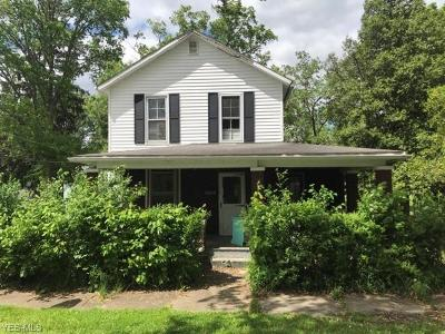 Mahoning County Single Family Home For Sale: 18048 4th Street