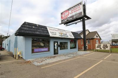Zanesville Commercial For Sale: 2103 Maple Avenue