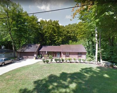 Youngstown Single Family Home For Auction: 63 Norwick Drive