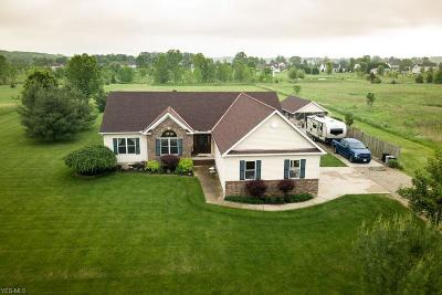 Litchfield Single Family Home Active Under Contract: 3735 Yost Road